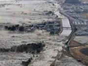 Cẩm nang tìm việc - Khởi nghiệp làm từ thiện sau thảm hoạ sóng thần