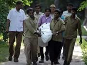Tin tức trong ngày - Nam sinh bị hổ cắn chết trong vườn thú ở Ấn Độ