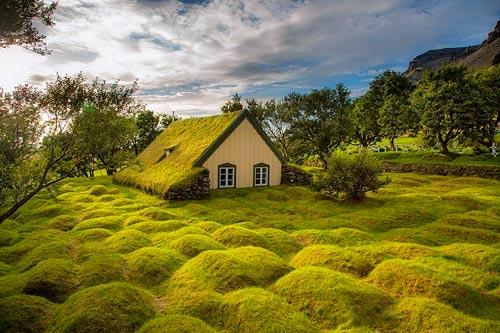Nhà thờ mái cỏ đẹp như trong cổ tích ở Iceland - 1