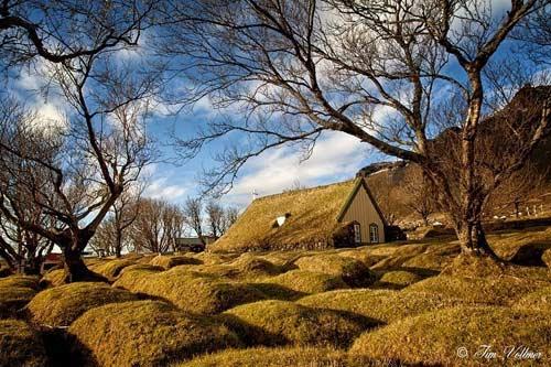 Nhà thờ mái cỏ đẹp như trong cổ tích ở Iceland - 8