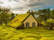 Du lịch - Nhà thờ mái cỏ đẹp như trong cổ tích ở Iceland