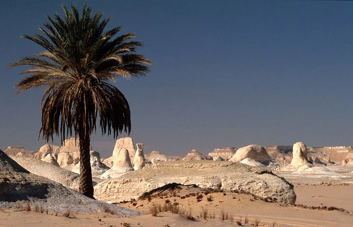 """Những """"tác phẩm điêu khắc kỳ bí"""" ở sa mạc Trắng - 8"""