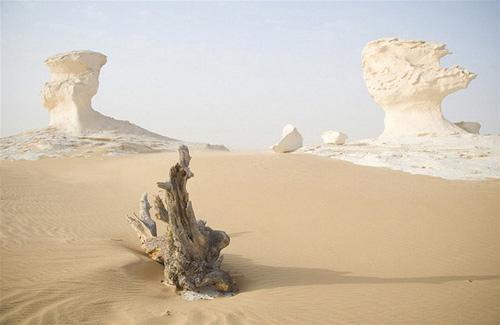 """Những """"tác phẩm điêu khắc kỳ bí"""" ở sa mạc Trắng - 2"""