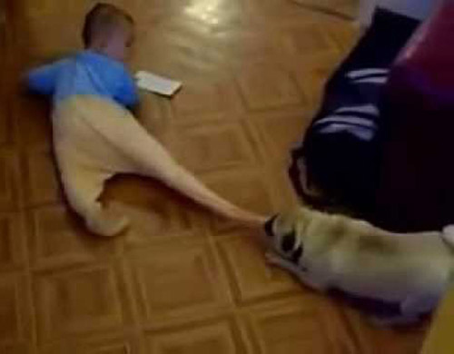 """Anh không đùa đâu đấy nhé """"cún"""" - 1"""