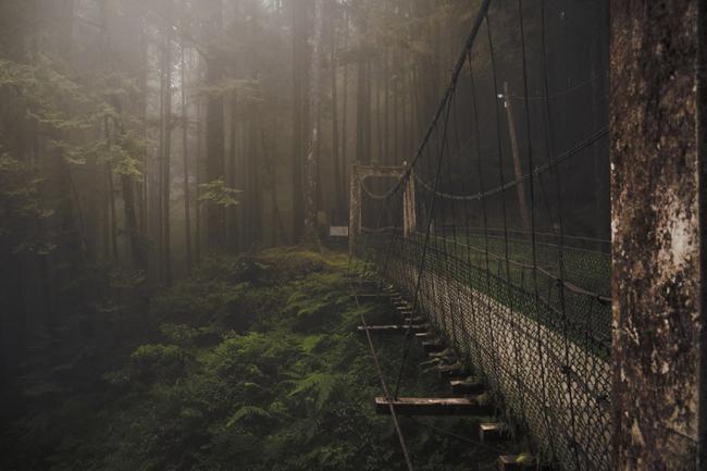 1. Cầu Rừng & nbsp;thuộc khu danh thắng quốc gia A Lý Sơn, Đài Loan. & nbsp;