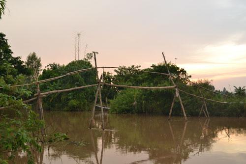 Khám phá những cây cầu khỉ cuối cùng ở miền Tây - 1