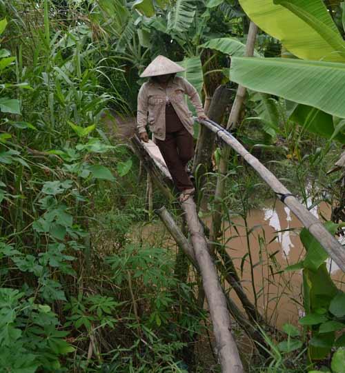 Khám phá những cây cầu khỉ cuối cùng ở miền Tây - 3