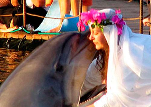 Nữ triệu phú kết hôn với... cá heo - 1