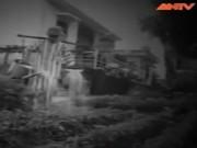 Video An ninh - 20 năm tìm lại chính mình (Phần 2)