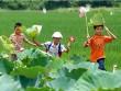Ký ức thời thơ ấu nơi miền quê