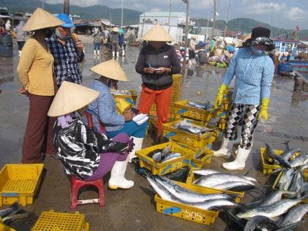 Về biển Sa Huỳnh ăn chả cá - 2