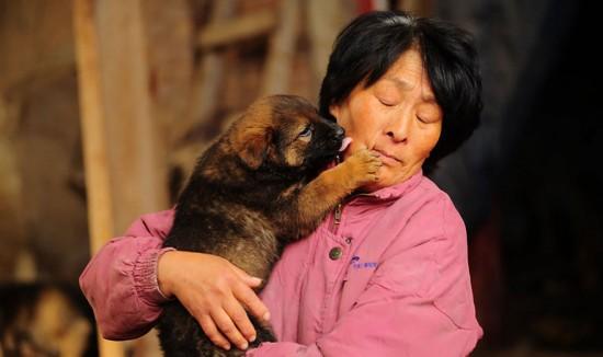 Cảm phục người phụ nữ chi nghìn đô để cứu 100 chú chó - 7