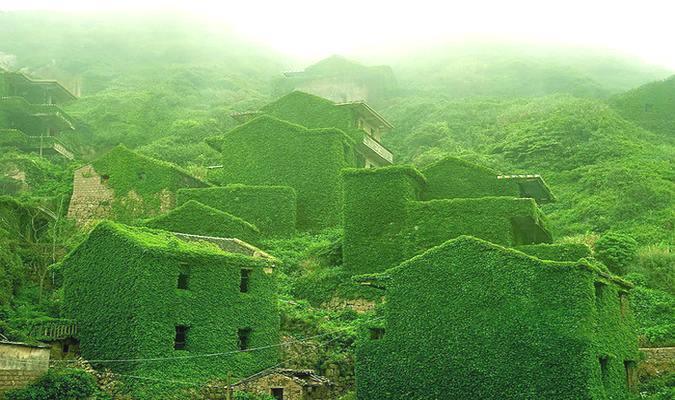 Ngôi làng phủ kín dây leo giữa đảo hoang - 1