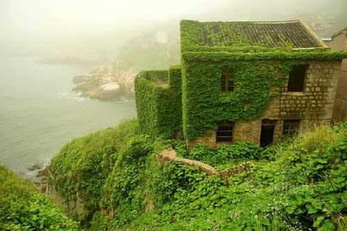 Ngôi làng phủ kín dây leo giữa đảo hoang - 2