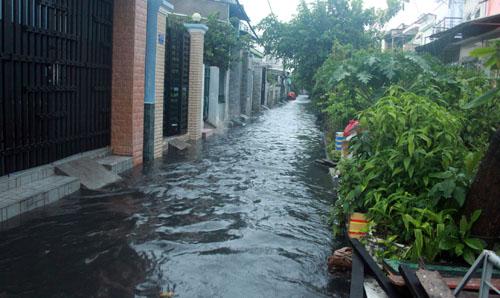 Người Sài Gòn vừa lội nước ngập vừa sợ sấm chớp - 4