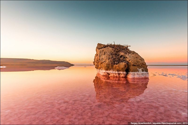Tuyệt đẹp hồ muối hồng thơ mộng ở Ukraine - 4