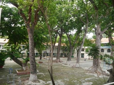 Độc đáo những ngôi trường trăm tuổi ở Sài Gòn - 10