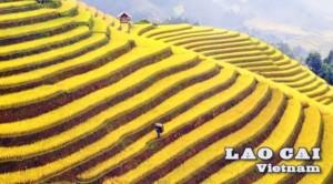 Lào Cai lọt top 10 danh thắng đẹp nhất thế giới