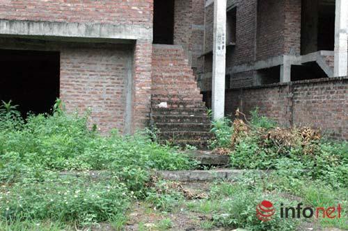 """Biệt thự chưa người ở đã """"hóa"""" nhà cổ giữa HN - 5"""