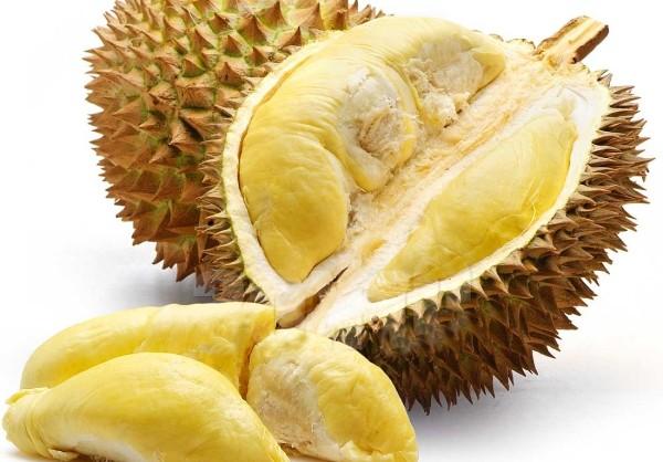 Sự thật việc ăn sầu riêng uống coca gây tử vong - 2