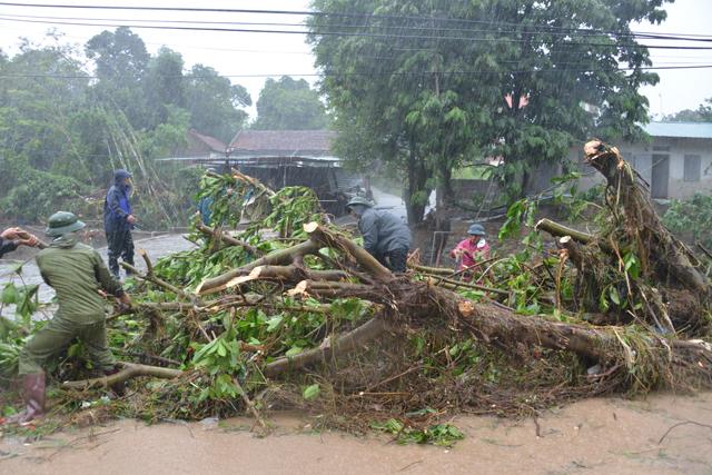 Mưa lớn trút xuống Quảng Ninh gây sạt đồi, gãy cầu - 9