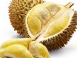 Sự thật việc ăn sầu riêng uống coca gây tử vong