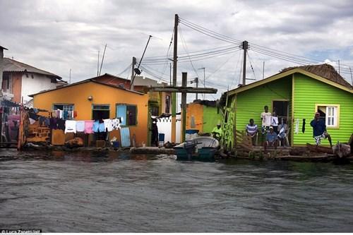 Ngàn người chen chúc sống trên hòn đảo chật nhất TG - 3