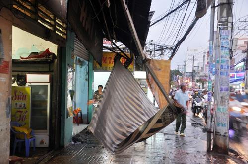 TP.HCM: Mưa lốc, hàng loạt cây bật gốc, ngã đổ - 7