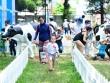 Ngày hội cao khỏe thú vị cho bé và gia đình
