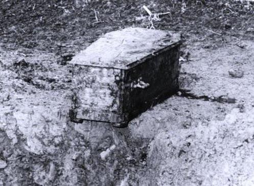 Bí ẩn những vụ cướp mộ người nổi tiếng - 11