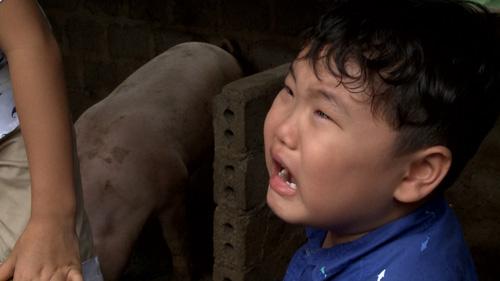 Con trai Xuân Bắc òa khóc khi phải... bắt lợn - 5