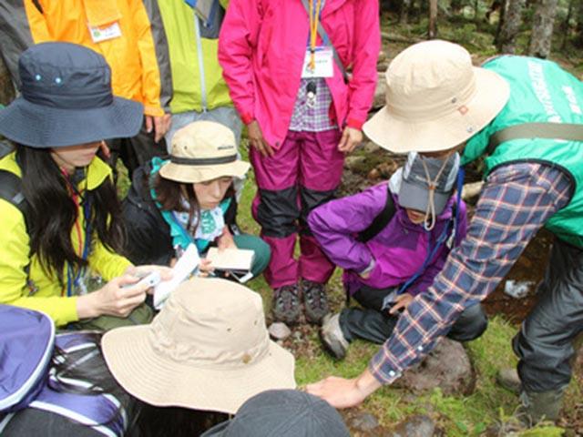 Phụ nữ Nhật rộ mốt ngắm rêu để xả stress - 3