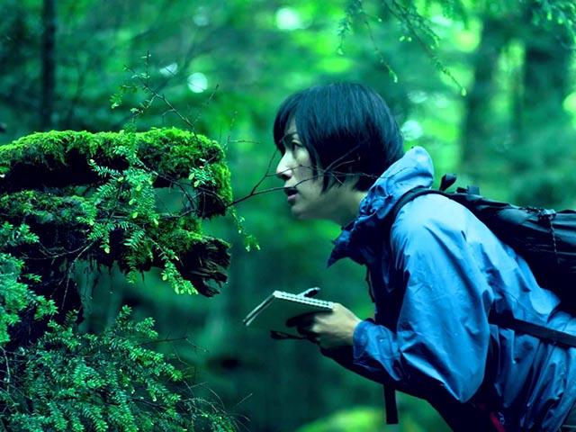 Phụ nữ Nhật rộ mốt ngắm rêu để xả stress - 4