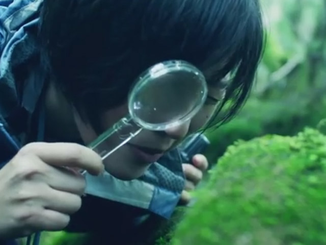 Phụ nữ Nhật rộ mốt ngắm rêu để xả stress - 5