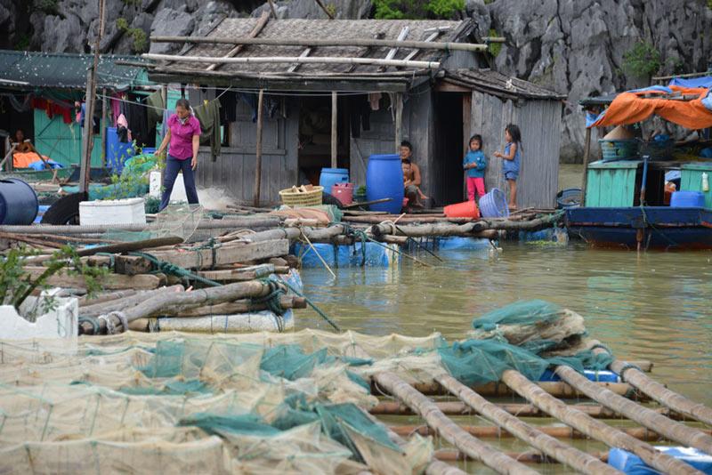 Quảng Ninh: Nước mắt ngư phủ hòa vào biển cả - 10