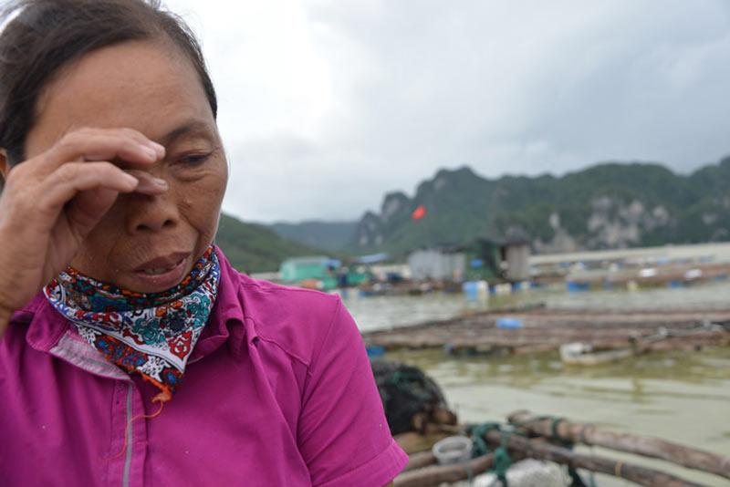 Quảng Ninh: Nước mắt ngư phủ hòa vào biển cả - 12