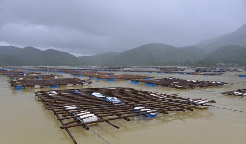 Quảng Ninh: Nước mắt ngư phủ hòa vào biển cả - 3