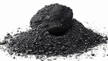 8 lợi ích không ngờ của than hoạt tính - 1