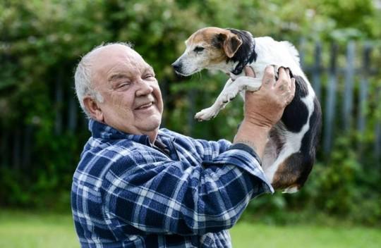 """Chó tái ngộ chủ 7 năm sau khi bị """"cẩu tặc"""" bắt - 1"""
