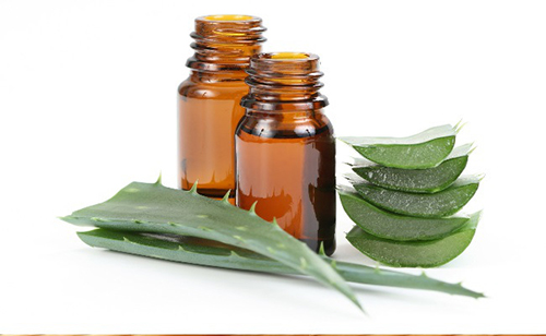 Tinh dầu trà: Thần dược của làn da mụn - 5