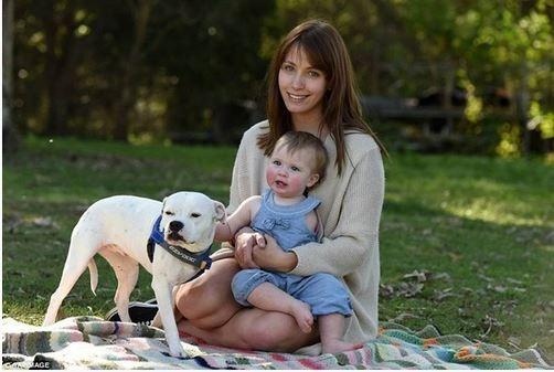 Cảm động tình bạn giữa cô bé cụt tay và chú chó ba chân - 1