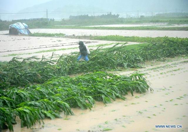 Ảnh: Người dân châu Á oằn mình trong mưa lớn, lũ quét - 12