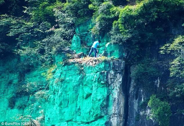 TQ: Sơn cả vách núi màu xanh cho... hợp phong thủy - 1