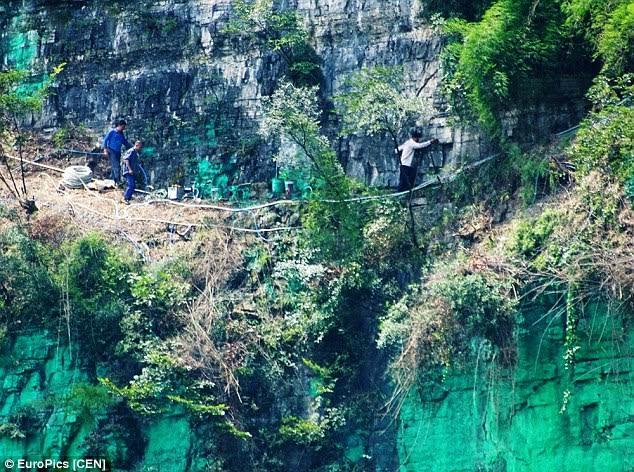 TQ: Sơn cả vách núi màu xanh cho... hợp phong thủy - 2