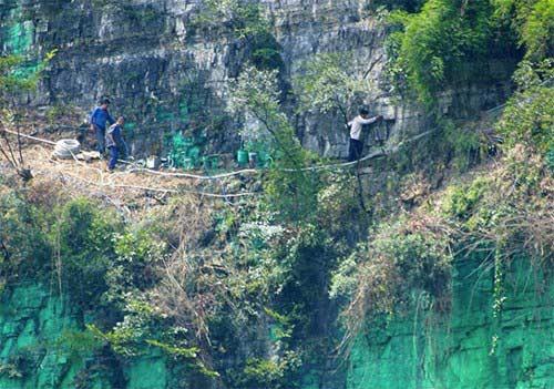 Kỳ nhân sơn 900 mét vách núi xanh lét cho... hợp phong thủy - 2