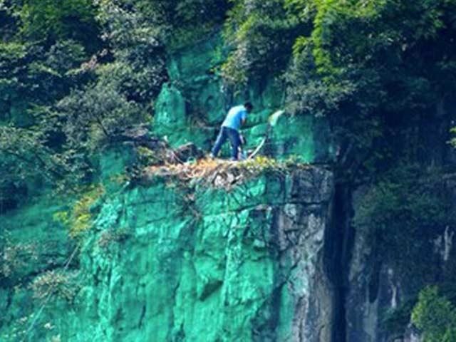 Kỳ nhân sơn 900 mét vách núi xanh lét cho... hợp phong thủy - 1