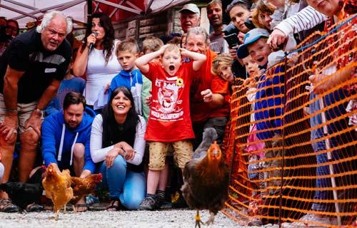 Cuộc thi gà chạy nước rút độc nhất vô nhị ở Anh - 10