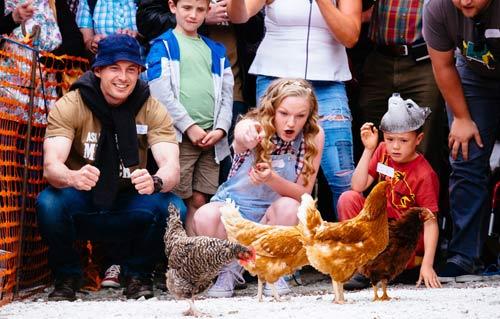 Cuộc thi gà chạy nước rút độc nhất vô nhị ở Anh - 6