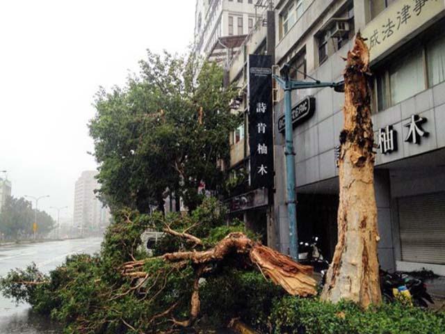 Toàn cảnh siêu bão mạnh nhất 2015 tàn phá Đài Loan - 1