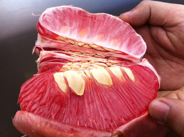 Ăn trái bưởi chữa dị ứng: